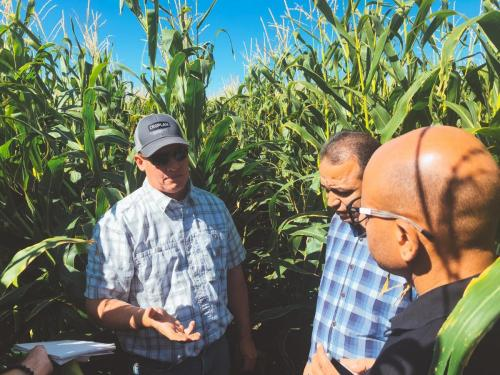 During a field visit in Utah, Joel Ferry explaining to Drs. Hazman and El-Sayed how he manages salinity issues with his crops