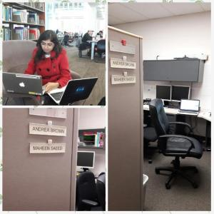 maheen-office