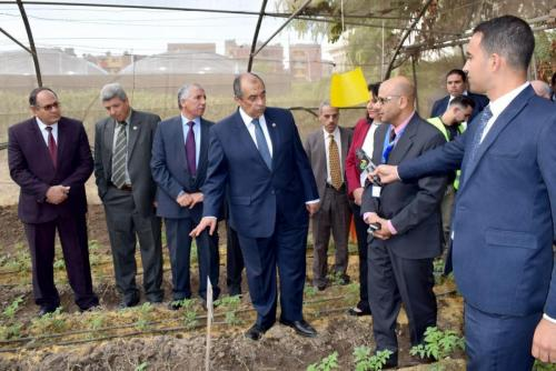 His excellency Dr. Ezz El Din Abou Stiet - the former minister of Agriculture, visiting Dr. Hazman field experiment